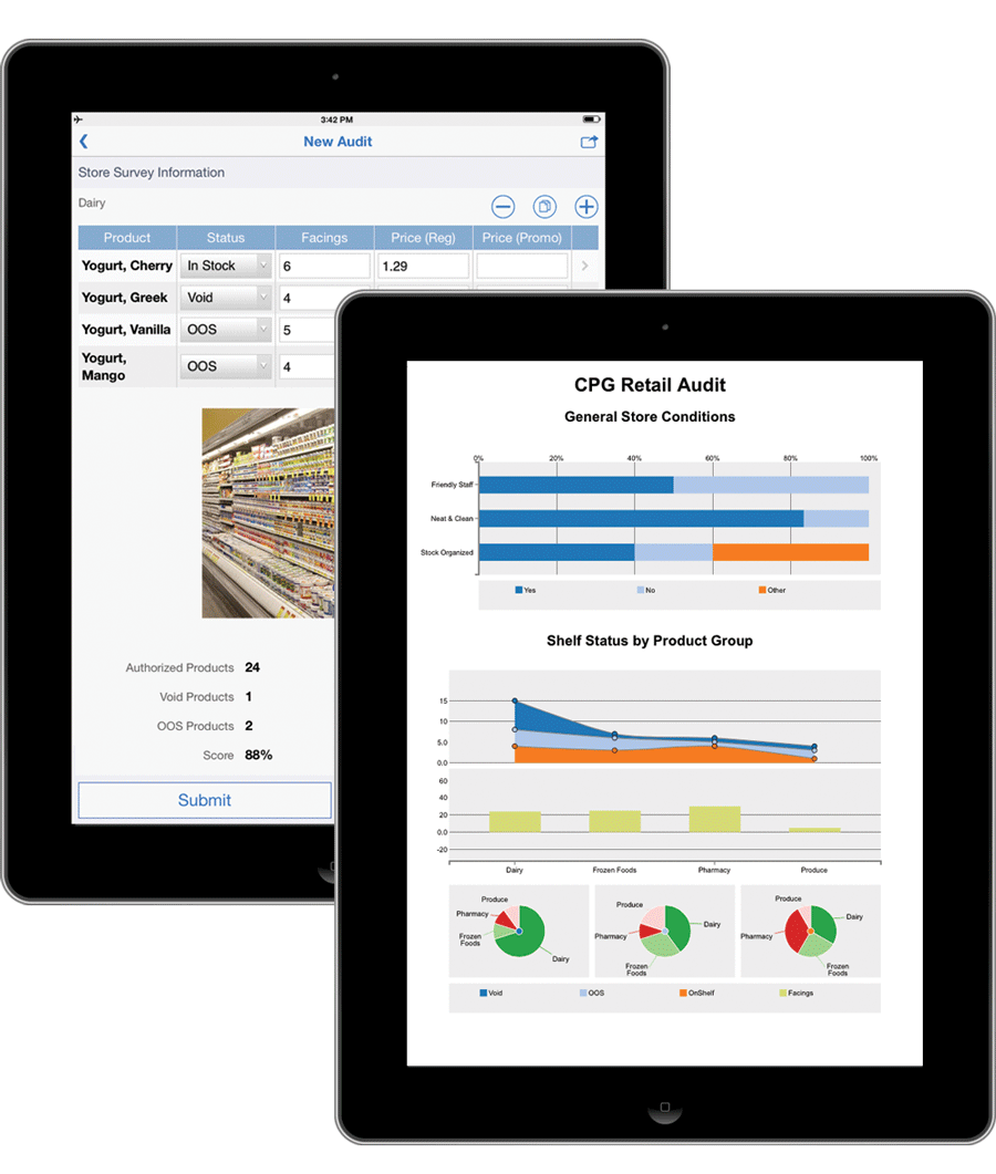 retail audit ipad